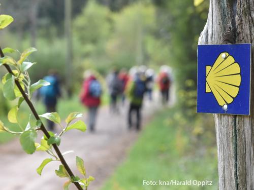 Pilger sind auf dem Jakobsweg unterwegs. Foto: kna/Harald Oppitz