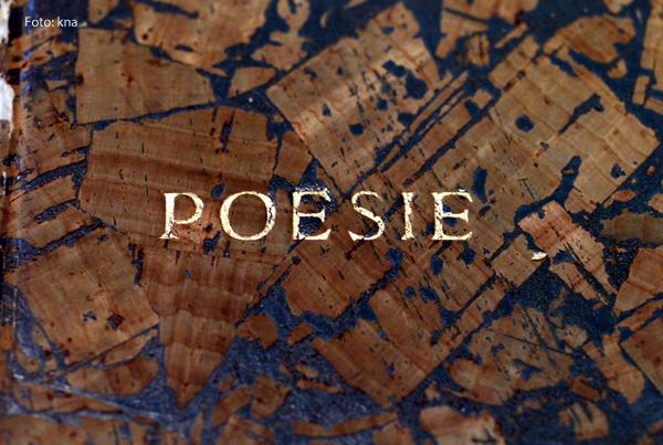 Der Einband eines Poesie-Albums