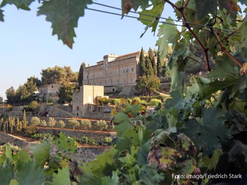 Das Foto zeigt das Weingut Cremisan in Beit Jala bei Betlehem.
