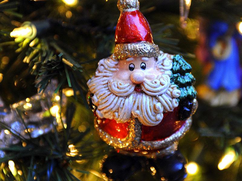 österreich Weihnachtsbaum.Wie Treu Sind Deine Nadeln Bonifatiusbote Der Sonntag Glaube